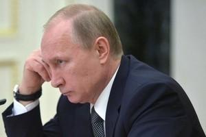 Социологи предрекли победу Путина на выборах президента