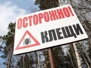 Саяногорск готовится к сезону клещей