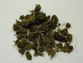 В Хакасии у наркомана изъято 10 кг марихуаны