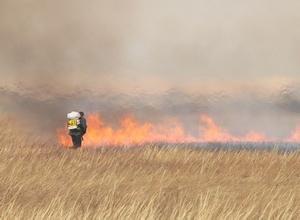 В Саяногорске начались плановые отжиги травы
