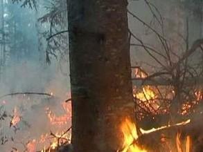 В Хакасии в многочисленных пожарах пострадали 15 человек