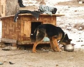 Черемушкинская молодежь решила навести порядок на родниках поселка