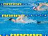 28 мая в СК «Абакан» стартуют соревнования по плаванию
