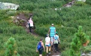 Парк «Ергаки» ужесточил правила для туристов после нападения медведя на саяногорцев