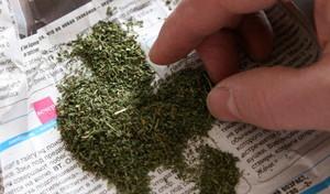 В Саяногорске задержали двух граждан с марихуаной