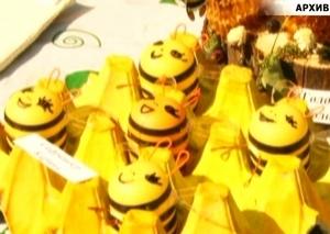 В Саяногорске выберут самую красивую пчелу