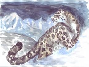 В Хакасии начался конкурс рисунков, фотографий и сувениров «Дикие кошки Южной Сибири»