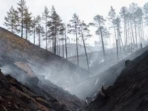 Уроженец Хакасии пострадал при тушении пожара в Бурятии. Его коллега погиб
