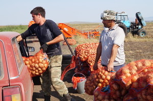 Погорельцы Хакасии начали получать гуманитарный урожай