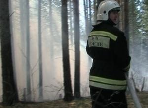 В Хакасии продолжает действовать особый противопожарный режим в лесах