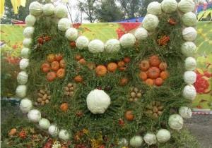 На хакасском празднике урожая в Абакане выставили композиции из плодов и цветов