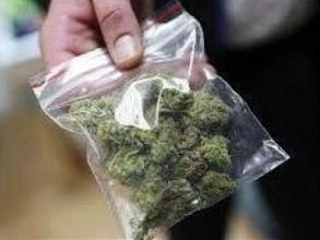 В Хакасии изъяли партию марихуаны