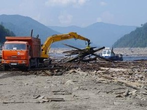 Миллионы кубометров затопленного леса стали угрозой для Саяно-Шушенской ГЭС