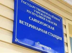 Ветслужба Саяногорска переехала