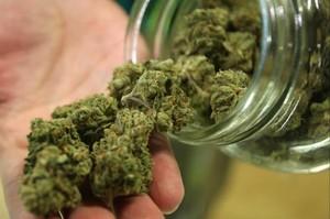 В Саяногорске полицейские изъяли у мужчины более 4 килограммов марихуаны