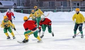Стартовал чемпионат Хакасии по хоккею с мячом среди мужских команд