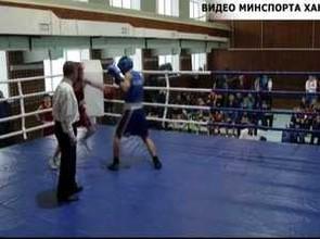 У саяногорских боксеров две три награды первенства Хакасии