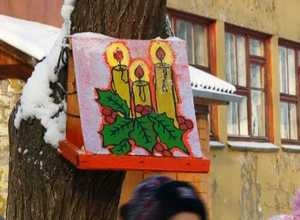О птицах зимой позаботятся «Васильки» из детсада «Дюймовочка»