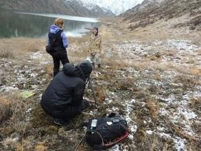Московский телеканал снял фильм о снежном барсе