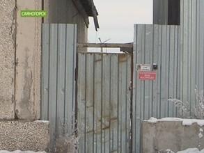 Грибники испортили в Саяногорске воздух