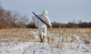 В Хакасии закончилась охота на пушных животных и начнется – на забывчивых охотников