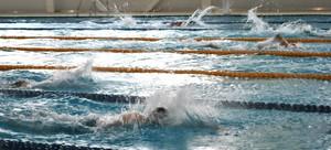 В копилке пловцов Абакана четыре медали чемпионата и первенства СФО