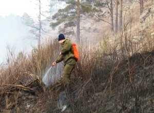 В Саяногорском лесничестве прошли масштабные противопожарные учения