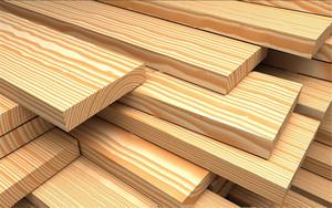 В Абазе создадут современное лесоперерабатывающее предприятие