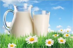 Хакасское молоко жирнее красноярского и новосибирского