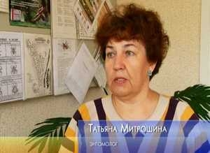 В Саяногорске от клещей обработано лишь 3 базы отдыха