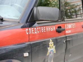 В Хакасии связали и убили 13-летнюю девочку