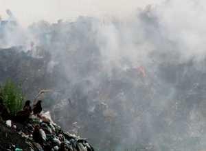 Горящий мусор доставляет неудобство горожанам