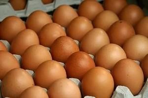 В Хакасии арестовали фургон с подозрительными яйцами