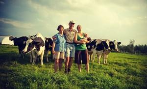 В Хакасии дан старт проекту «Семья для развития села»