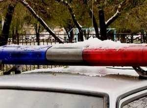 ГИБДД Саяногорска проводит «горячую линию»