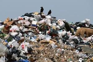 Повезло: мусор Саяногорска отдали в руки республики