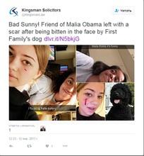 СМИ: собака Обамы покусала девушку, пришедшую в гости в Белый дом