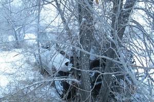 ДТП в Саяногорске: машина - в кустах, пешеход - в больнице