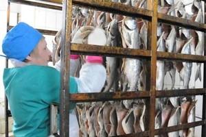 В Хакасии объявлен конкурс на рыбопромысловыми участками