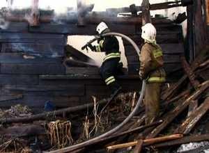 В Большом Караке в сарае сгорело 40 кур
