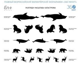 У жителей Абакана проверят «экологическое зрение» в рамках Всероссийского экомарафона «360 минут»