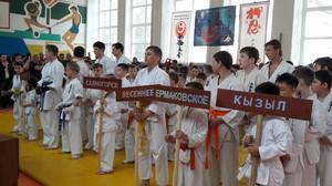 Турнир по Киокусинкай каратэ (дисциплина Синкиокусинкай) памяти А.Матерова п. Таштып