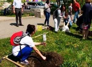 У Саяногорска есть возможность превратиться во фруктовый сад