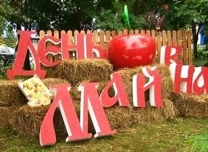 В Майна отметили День яблока