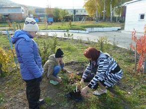 Реабилитационный центр в Саяногорске накрыло зеленой волной