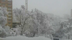 Весенние текстуры не могут прогрузиться в Хакасии