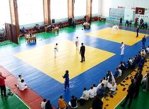 В Саяногорске прошел юбилейный турнир по дзюдо памяти Владимира Рабовича
