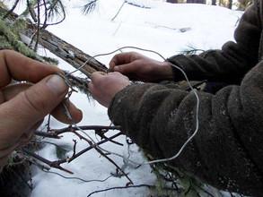 В Хакасии осудили браконьера: 200 часов работ и 75 тысяч рублей штрафа