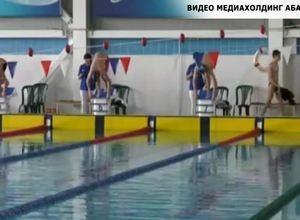 В Хакасии подвели итоги кубка республики по плаванию