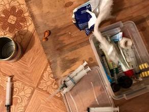 Жительница Саяногорска устроила в своей квартире дезоморфиновый притон